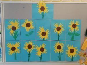 1-luokkalaisten auringonkukat