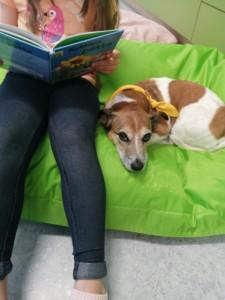 Koira makaa säkkituolilla. Lapsi lukee vieressä kirjaa.
